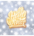 Hello winter golden typography label Greeting vector image vector image