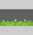 real green grass with flower and butterfly ladybug vector image vector image