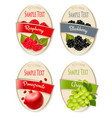 set of labels of berries and fruit raspberry vector image vector image