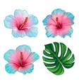 watercolor colorful hand drawn hibiscus flower vector image vector image