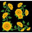 yellow sunflowers on the black background design e vector image vector image