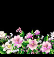 border with magnolia flowers vector image