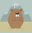 cute bear with mountain vector image vector image