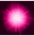 Deep Purple color design vector image vector image