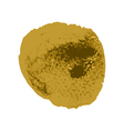 Gold brush paint stroke with rough edges on white vector image vector image