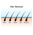 Hair removal colour vector image vector image