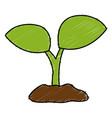 leafs plant ecology icon vector image vector image
