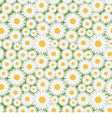 Camomile pattern vector image vector image