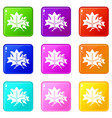 maple icons set 9 color collection vector image vector image