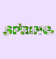 spring text floral design vector image