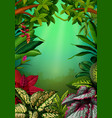 beautiful walpaper with the aglomena leaves vector image