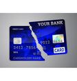 Broken credit card vector image