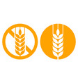 gluten free and wheat ear sign vector image