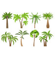 isolated coconut palm trees vector image vector image