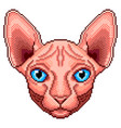 pixel sphinx cat portrait detailed isolated vector image vector image