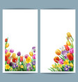 set cards with arrangement from multicolor spring vector image
