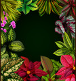 beautiful black background vector image vector image