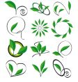 collection of leaves for design vector image vector image
