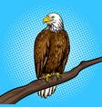 Eagle bird pop art style vector image
