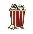 popcorn in striped bucket icon image vector image vector image