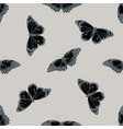 seamless pattern with hand drawn stylized cethosia vector image vector image