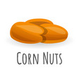 corn nuts icon cartoon style vector image vector image