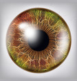 eye iiris vision medical concept vector image vector image