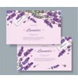 Lavender natural cosmetics banners vector image vector image