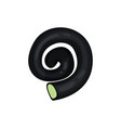 liquorice spiral with candy middle vector image
