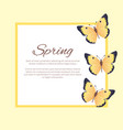 spring poster with text in frame color butterflies vector image