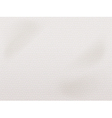 white leather texture vector image vector image