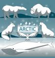 wild arctic animals vector image vector image