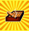 cigar box pop art vector image vector image