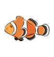 hand drawn clown fish vector image