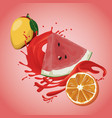 mango watermelon and orange splash vector image