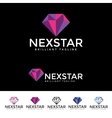Next Star Logotype vector image vector image
