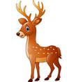 cartoon funny deer vector image