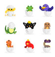 cute adorable colorful newborn animal characters vector image