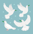 doves with olive branch vector image