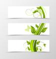 set header banner natural design vector image vector image