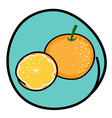 Two Fresh Oranges on Round Green Background vector image vector image