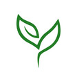 abstract seedling symbol icon on white vector image