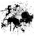black ink splatter background isolated on white vector image vector image