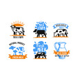 cow and milk emblem farm blue stickers vector image vector image
