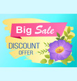 discount offer big sale advertisement label viola vector image