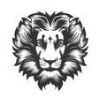 lion head drawn in engraving style vector image vector image