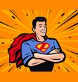 male superhero in pop art vector image