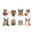 owl characters cartoon babirds with big funny vector image vector image