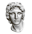 sculpture head alexander macedon 3d vector image vector image
