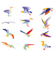 set colorful silhouettes seagulls vector image